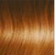Walnut Blonde