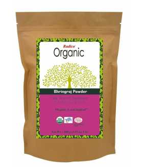 ORGANIC BHRINGRAJ Hair Wash & Treatment 100g